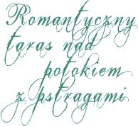 Romantyczny taras nad potokiem z pstrągami